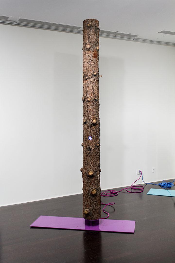 Donnie Molls, Beyond- installation 3