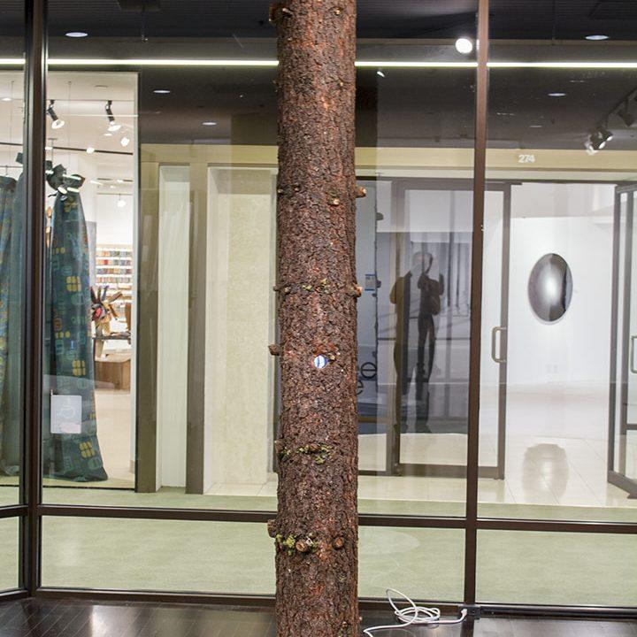 Donnie Molls, Beyond- installation 5